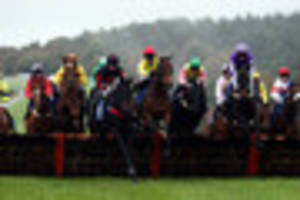 Haldon Gold Cup at Exeter Racecourse attracts new smart...